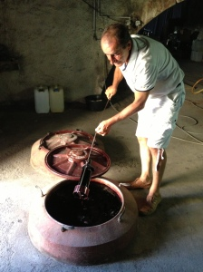 While training, the farmer came in to get a bottle of red for lunch (this is the top of a 3 meter high wine vat, btw)